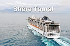 CRUISE SHIP SHORE EXCURSIONS!